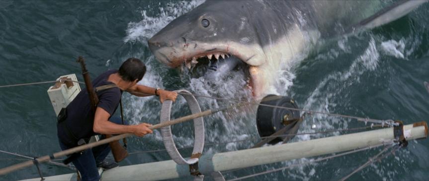 Jaws attacks