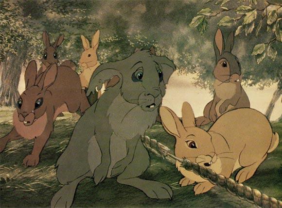 La collina dei conigli 03
